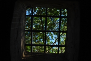 Looking out of ruins